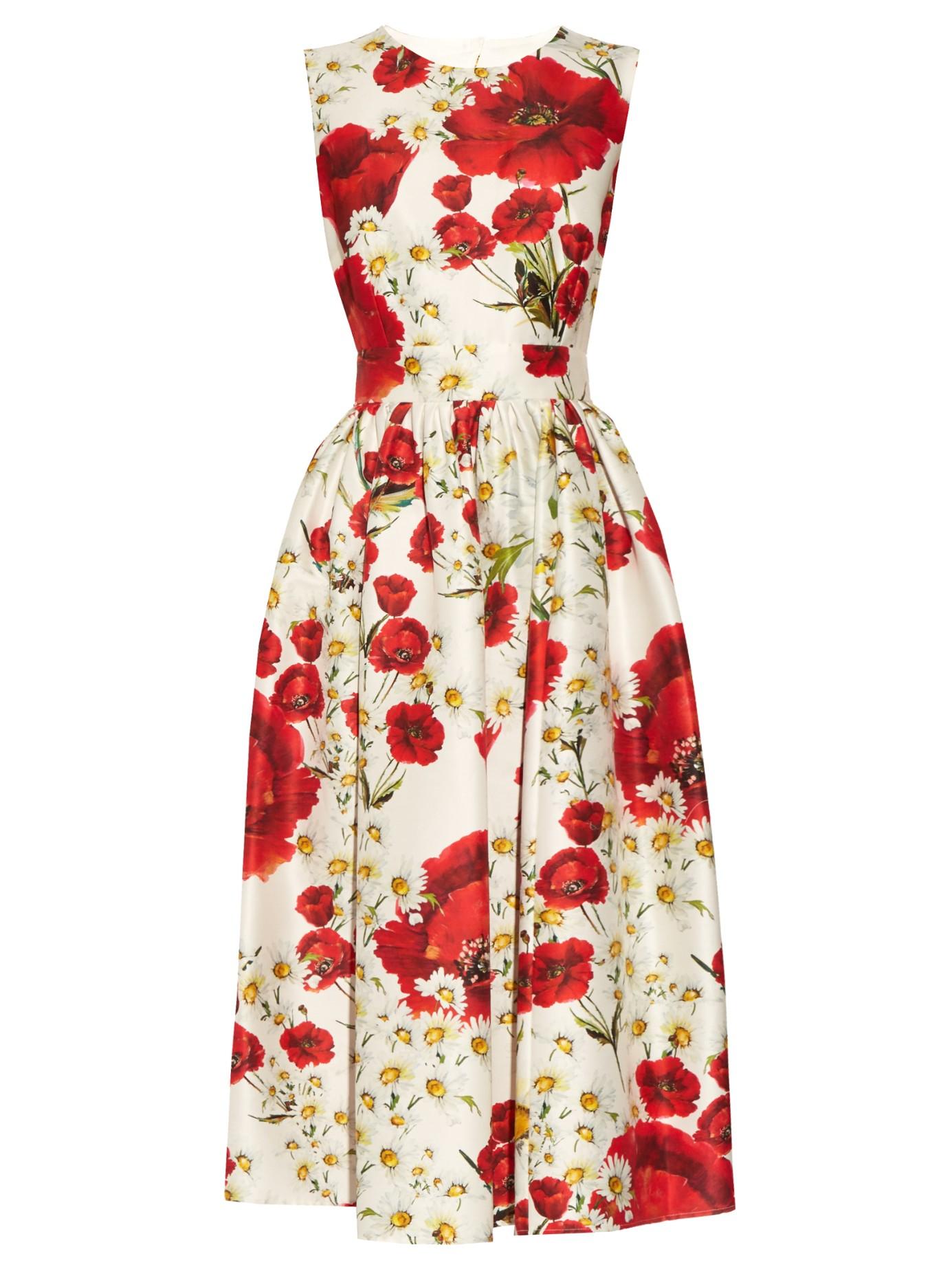 ee3c5646 Dolce & Gabbana Poppy-print Cotton And Silk-blend Dress - Lyst