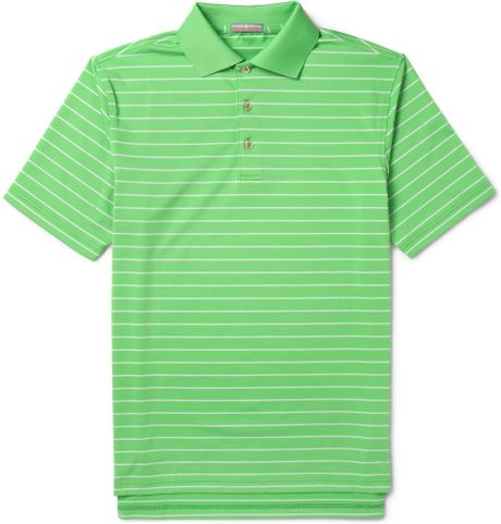 Polo Striped t Shirt Striped Jersey Golf Polo