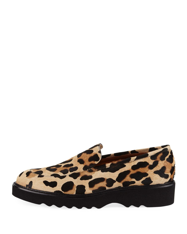 a75d3de1b7b Lyst - Aquatalia Kelsey Metallic Leopard Calf Hair Loafer in Brown