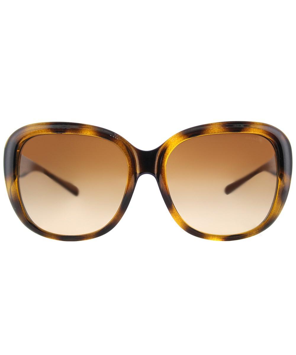 9af640e60a9c ... low cost lyst coach hc8207 539413 dark tort dark tort gold sig c square  l1634 sunglasses