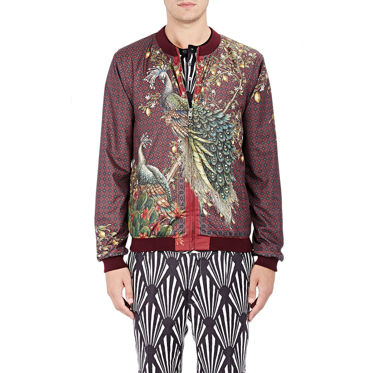 Dolce & gabbana Men's Peacock-print Bomber Jacket in Red for Men ...