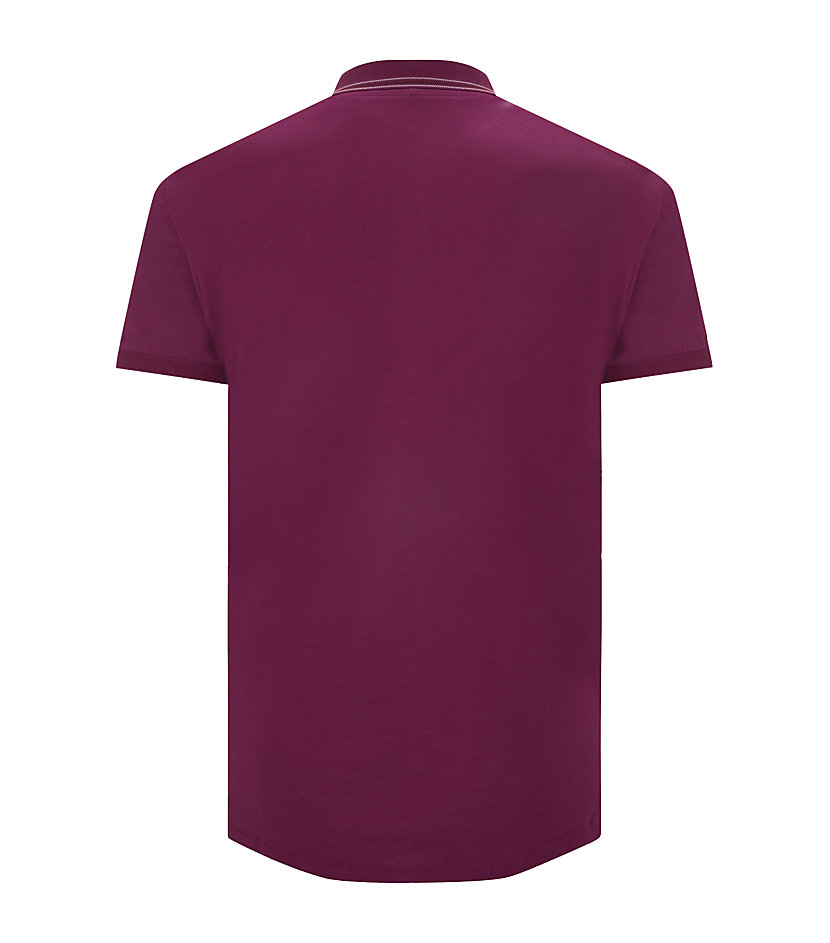 Burberry London Purple Striped Collar Polo Shirt For Men