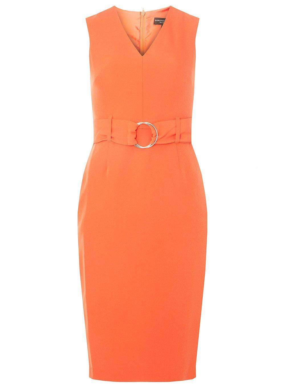 With Paypal Cheap Price Dorothy Perkins Womens O-Ring Belted Pencil Dress- Best Online Discount Explore K1SkGvyqhd