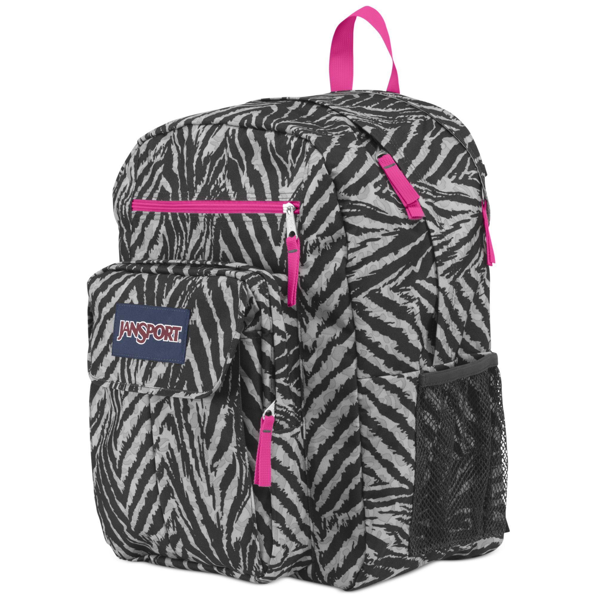 Jansport Digital Student Backpack in Pink | Lyst