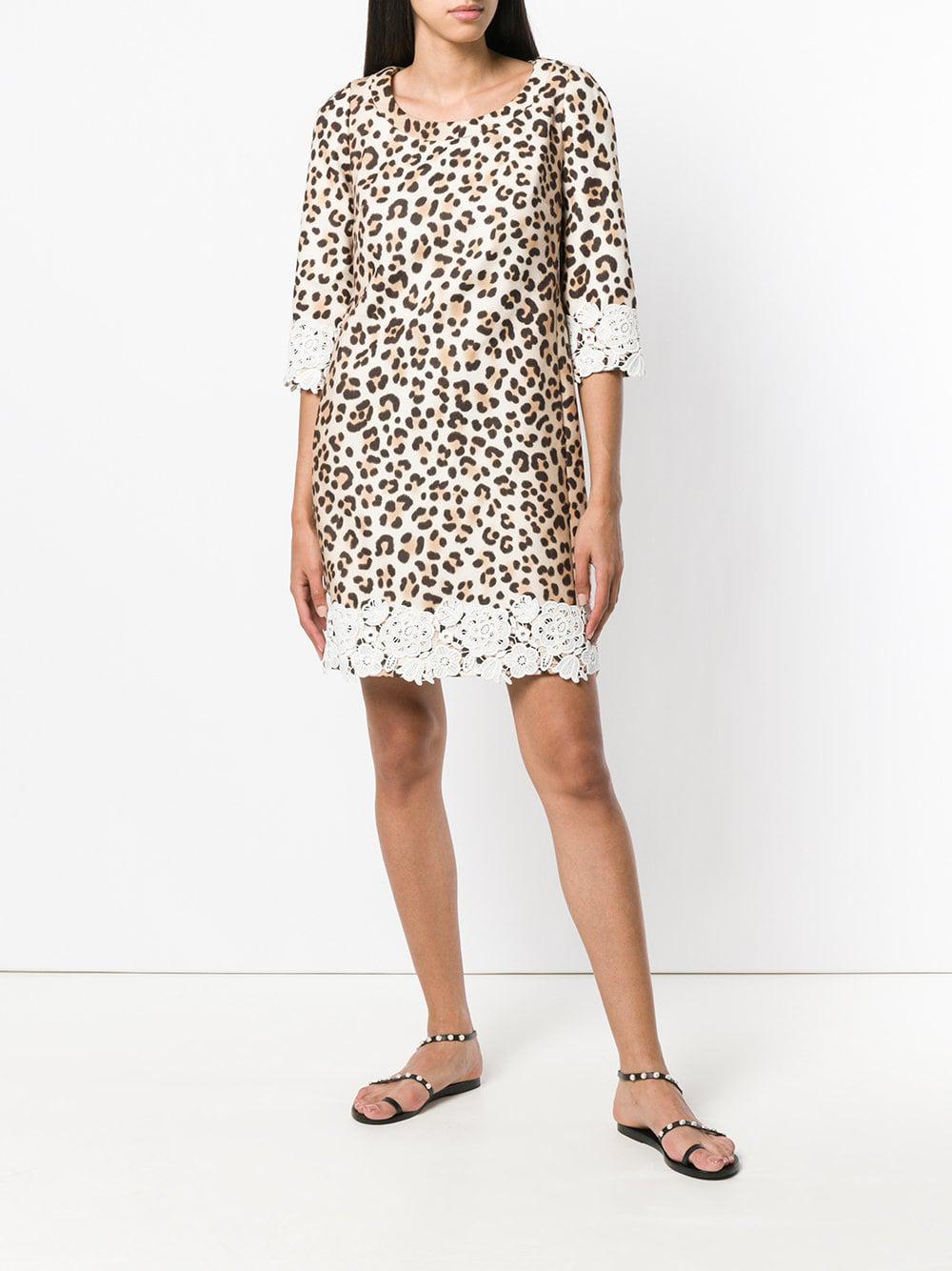593244a65c Blumarine - Multicolor Leopard Print Shift Dress - Lyst. View fullscreen