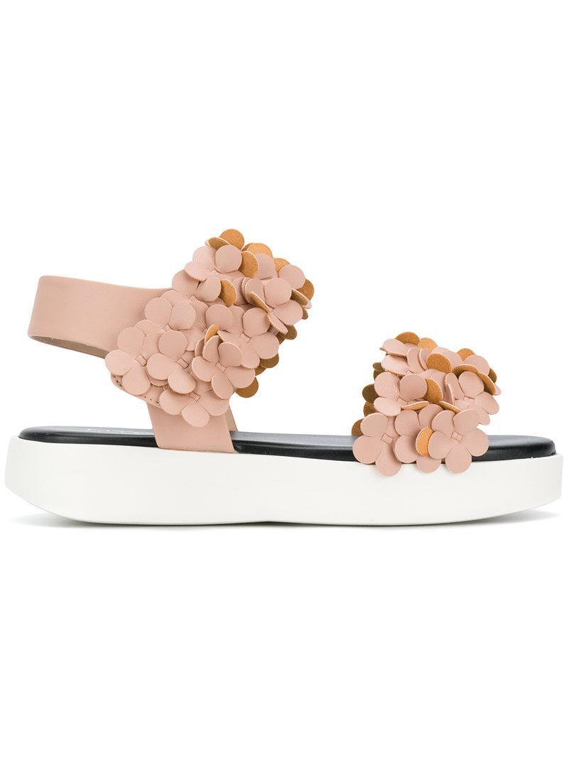 Sandales Floraux Mer Gris - Rose Et Violet sVxBWX9WA9