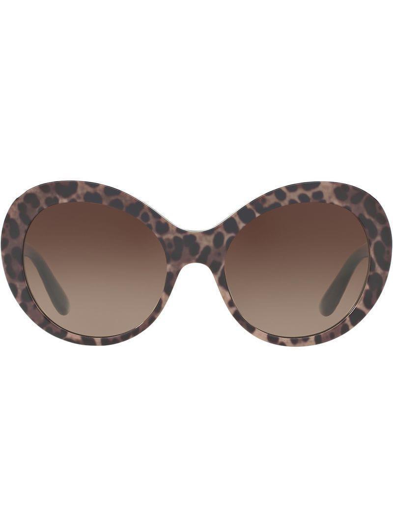 c69b46a1024 Dolce   Gabbana Dg4295 in Brown - Lyst