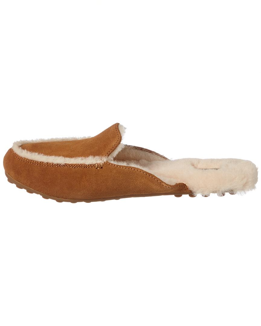 a817e52007c Women's Brown Lane Suede Slipper
