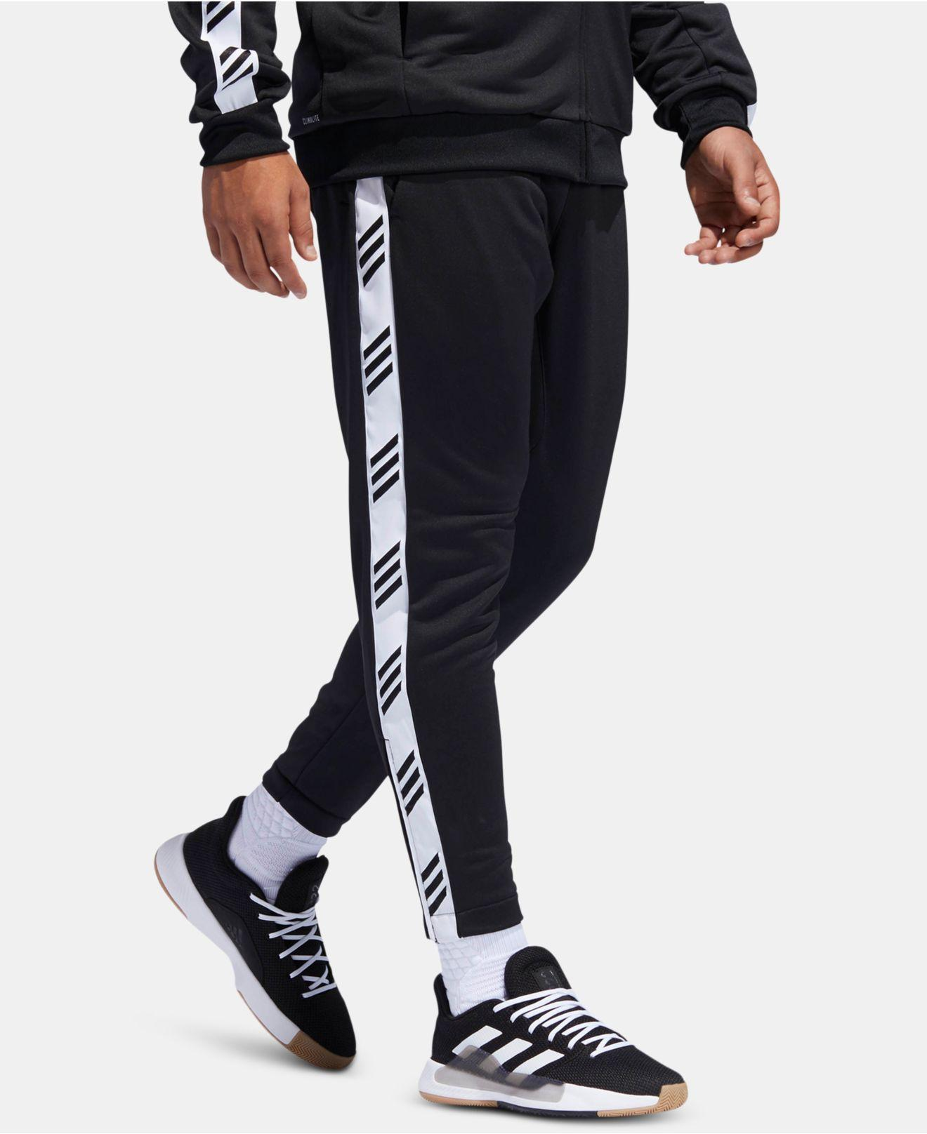 262e5adf0b3 adidas Climalite® Logo Pants in Black for Men - Lyst