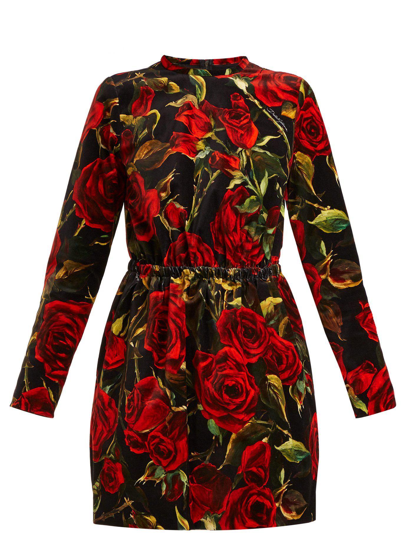 Lyst - Dolce   Gabbana Floral-printed Velvet Minidress in Red - Save 14% 3cc649bba