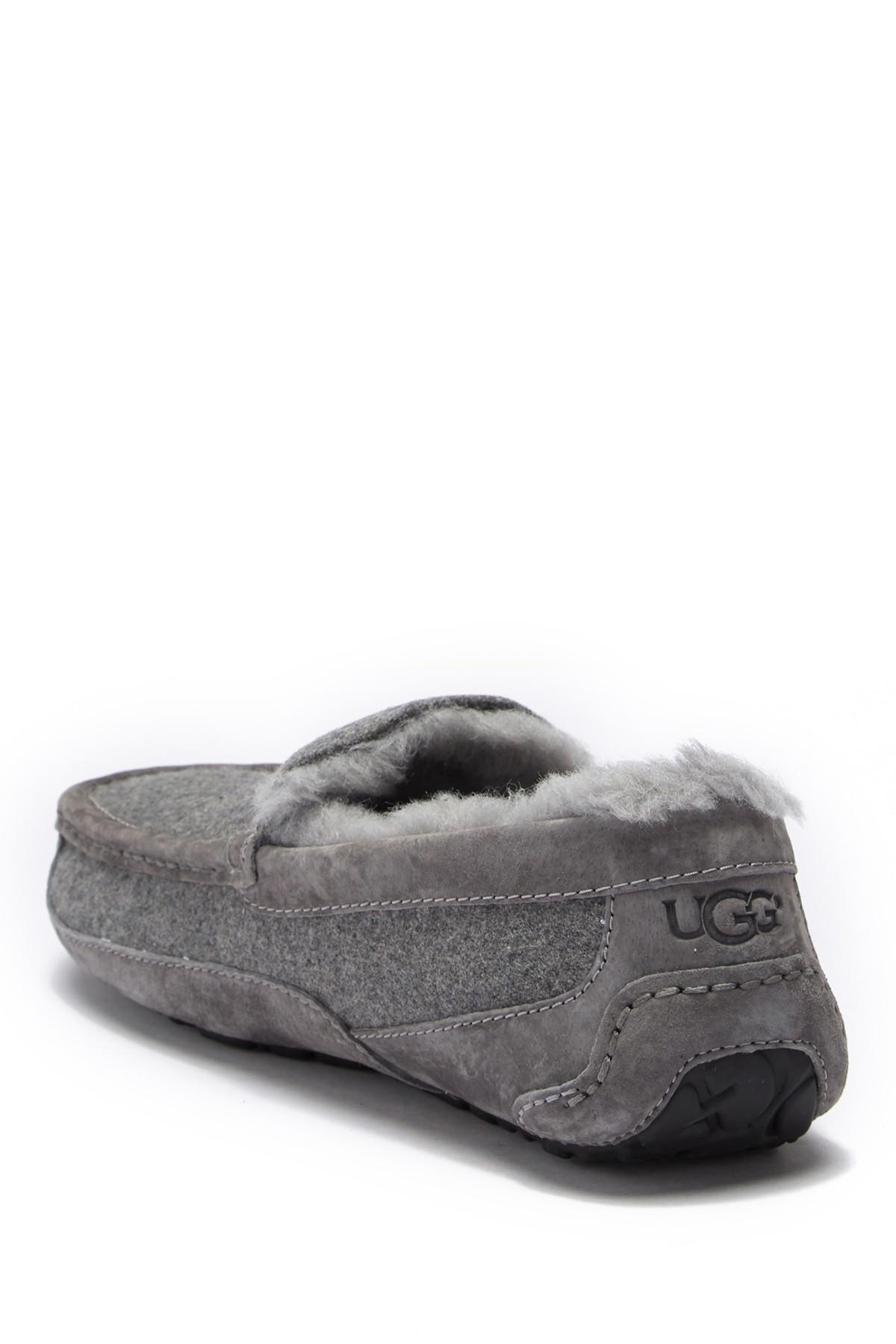 aa10d6918 Lyst - UGG Ascot Uggpure(tm) Slipper in Gray for Men