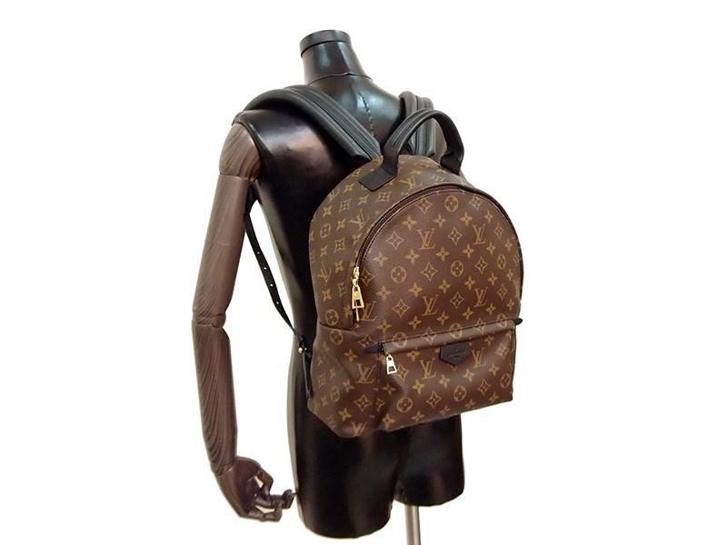 fce1c072d3a2a Louis Vuitton Palm Springs Backpack Mm Monogram M41561  new  in ...