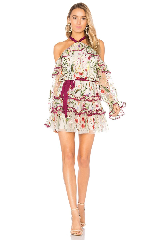 Alexis Adeline Dress  ... Ivanka Trump Clothing