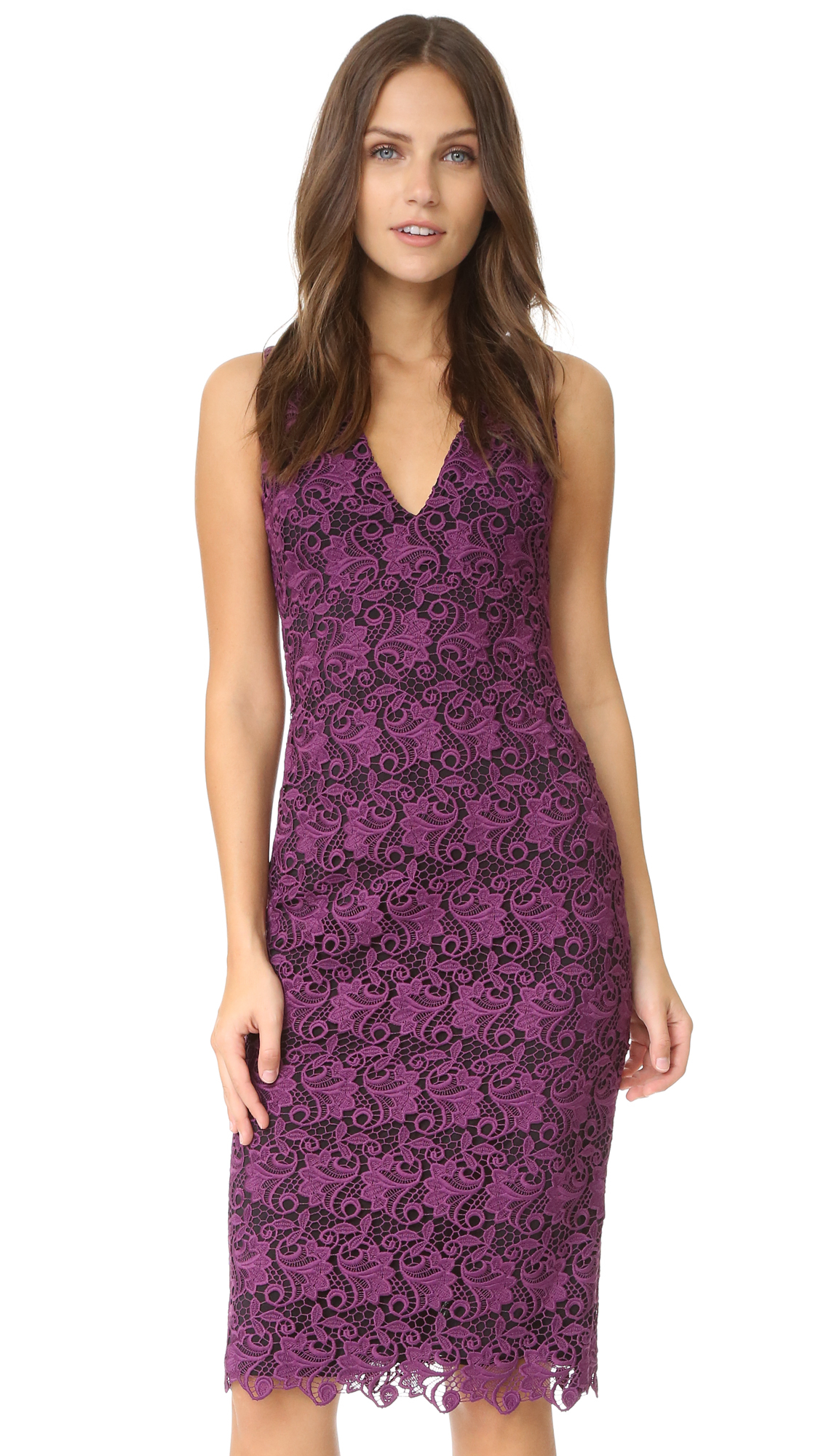 Lyst - Alice + Olivia Preslee Fitted Lace Midi Dress in Black