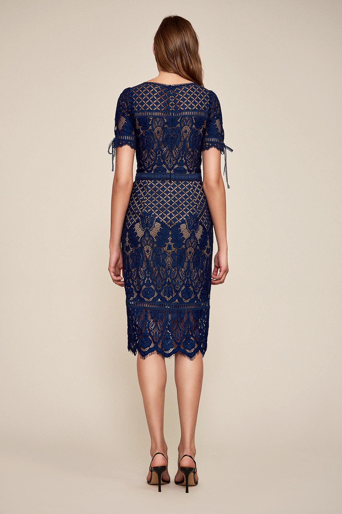 266f772408159 Tadashi Shoji. Women s Blue Bobek Lace Tea-length Dress