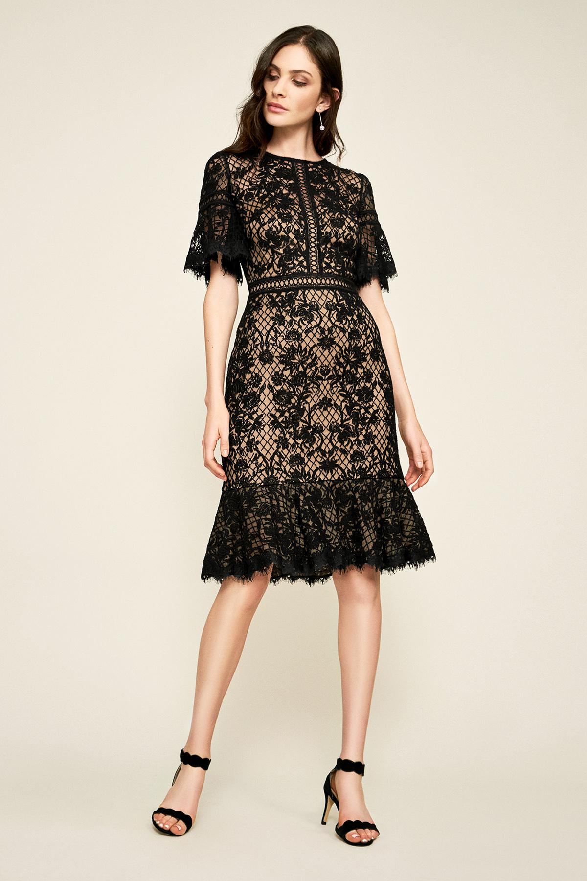 35cec0f83b0 Lyst - Tadashi Shoji Mirabelle Embroidered Dress - Petite in Black