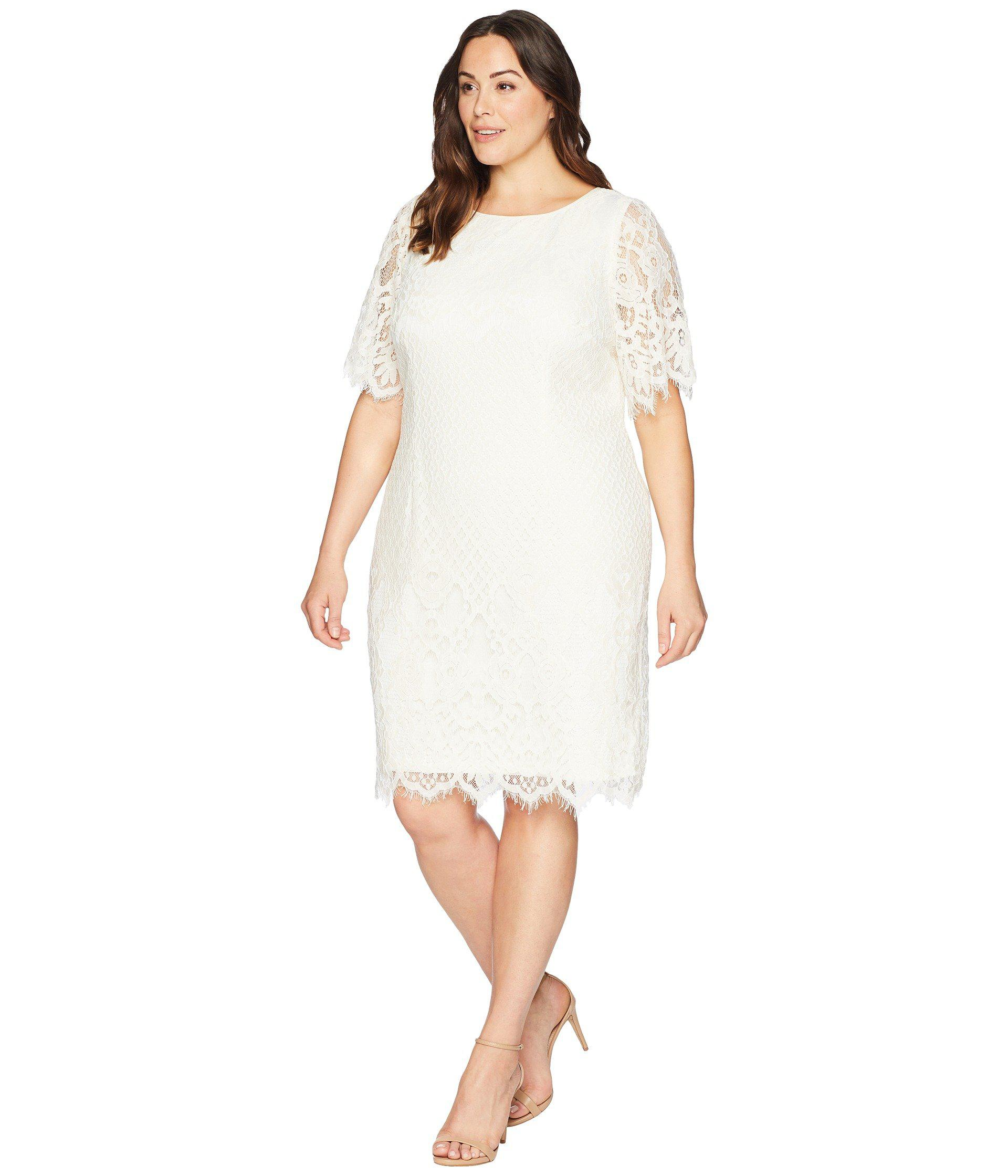 Adrianna Papell Plus Size Eyelet Dress