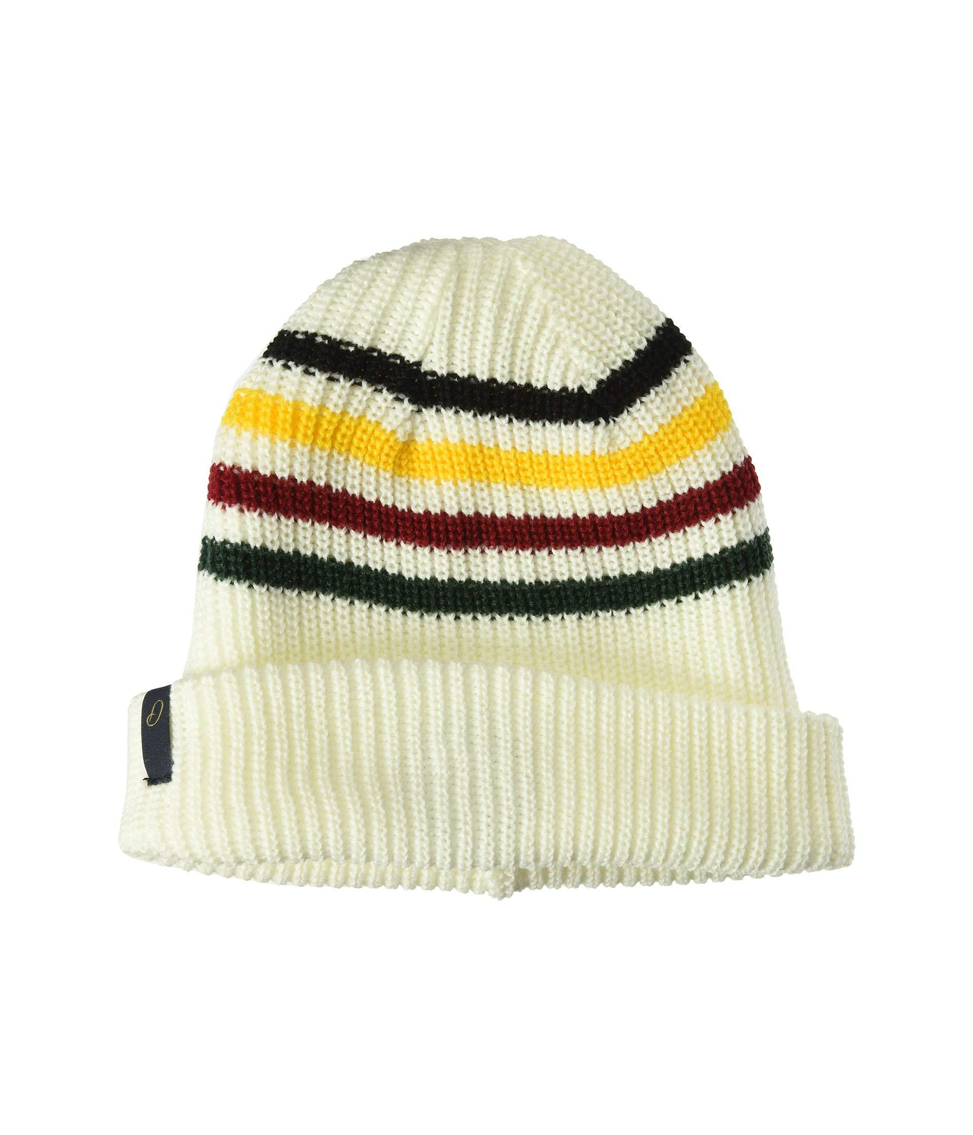 2e6604a7c97 Lyst - Pendleton National Park Reversible Beanie (olympic Stripe ...
