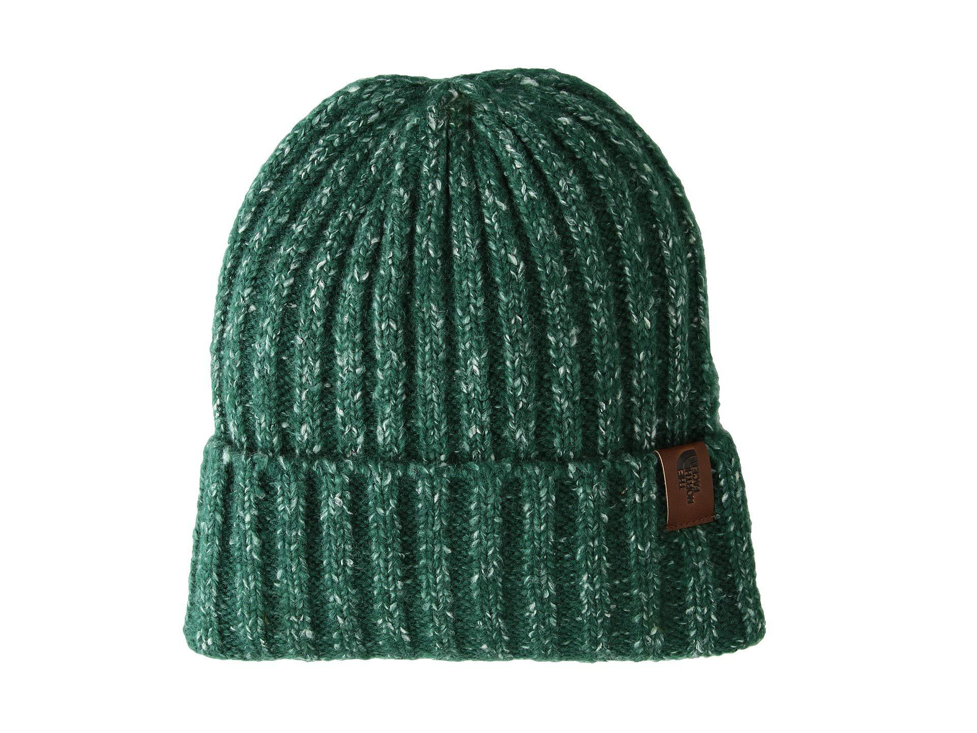 1167e0f7f2237 The North Face Chunky Rib Beanie (botanical Garden Green) Beanies in ...